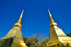 Doi tung relics,doi tung temple. Phataddoitung the temple at chaingrai thailand Stock Photography