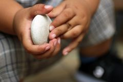 Doigts de bébé tenant la pierre blanche Mains de bébé de 1 an photos stock