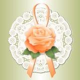 Doily del merletto di +EPS, albicocca Rosa Fotografia Stock Libera da Diritti