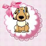 Doily dog Stock Images