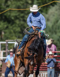 Doing Alright. Saddleback riding cowboy at the Scott Valley Pleasure Park Rodeo in Etna, California royalty free stock images