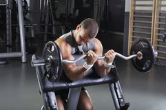 Doing Biceps Exercise modelo masculino muscular considerável Fotos de Stock Royalty Free