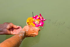 Doing puja at the river Ganges in India Stock Image