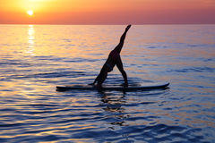Doing yoga on the beach. Sportive female doing yoga exercise on the beach over beautiful sunset background, standing on the sup board on the water in Pose dog Royalty Free Stock Photography