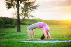 Doing yoga outdoors Stock Images