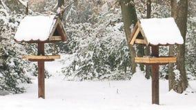 Dois alimentadores do pássaro no dia nevado do inverno video estoque