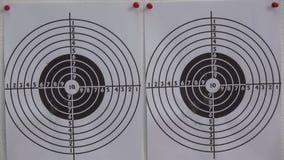 Dois alvos e pelotas da pistola pneumática