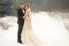 Dois amantes na floresta, um par feliz, aperto, implorando sorriso, noivos Casamento no inverno terno e vestido de casamento imagens de stock royalty free