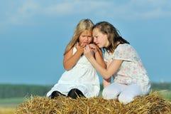 Dois amigos felizes da rapariga que apreciam a natureza Imagens de Stock