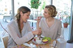 Dois amigos no café que tem o almoço Imagem de Stock