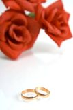 Dois anéis de casamento fotos de stock