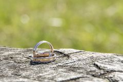 Dois anéis de casamento dourado Fotos de Stock