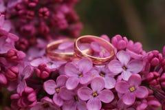 Dois anéis de ouro com flores lilás Foto de Stock