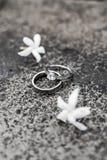 Dois anéis e dois jasmim fotografia de stock