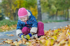 Dois anos de menina idosa que guarda o copo da garrafa térmica que hunkering no contexto da coberta da folha do outono Foto de Stock