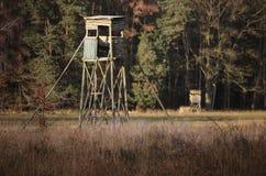 Dois assentos altos Foto de Stock Royalty Free