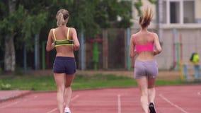 Dois atletas competem na corrida Vista traseira video estoque