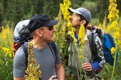 Dois backpakers e flores de florescência Imagens de Stock Royalty Free