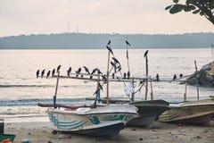 Dois barcos de pesca no por do sol Cidade de Halle, Sri Lanka foto de stock