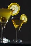 Dois bocals de martini Fotos de Stock Royalty Free