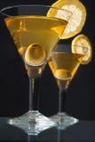 Dois bocals de martini Imagens de Stock