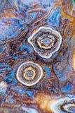 Dois botões da ágata Fotografia de Stock Royalty Free
