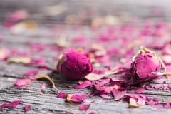 Dois botões e pétalas cor-de-rosa no fundo de madeira Fotografia de Stock