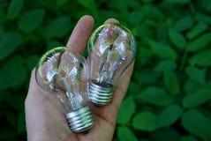 Dois bulbos de vidro no braço Imagem de Stock Royalty Free