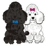 Dois cães diferentes ilustração stock
