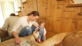 Dois cães grandes e mãe com o bebê no assoalho A fam?lia feliz tem o divertimento Handheld video estoque