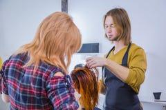 Dois cabeleireiro profissionais que secam o cabelo do cliente imagens de stock royalty free