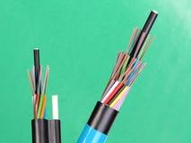 Dois cabos fracos do tubo da fibra ótica com extremidades descascadas e descobrem fibras óticas coloridas expostas Fotos de Stock Royalty Free