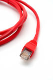 Dois cabos vermelhos da rede isolados fotografia de stock royalty free