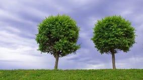 Dois cais em um céu nebuloso do fundo Imagem de Stock