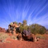 Dois camelos no rum do barranco Fotos de Stock Royalty Free