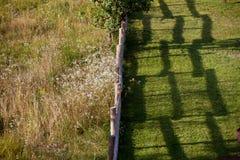 Dois campos separaram a cerca de madeira Imagens de Stock