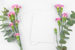 Dois cartões brancos vazios Foto de Stock Royalty Free