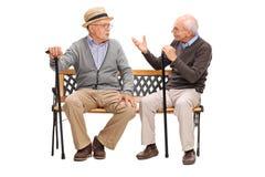 Dois cavalheiros superiores que têm uma conversação imagens de stock