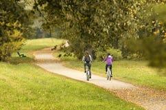 Dois ciclistas no trajeto do outono com suas partes traseiras ao espectador Imagens de Stock