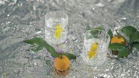 Dois cocktail com limão e mandarino na tabela com folha piscar vídeos de arquivo