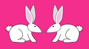 Dois coelhos Imagem de Stock