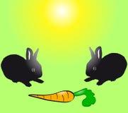Dois coelhos pretos do bebê com cenoura. Fotografia de Stock