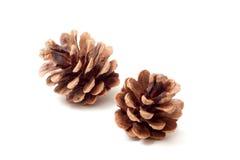 Dois cones   Imagens de Stock Royalty Free