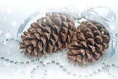 Dois cones brilhantes do pinho marrom com festões Fotografia de Stock