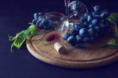 Dois copos de vinho com vinho tinto e uvas Imagens de Stock