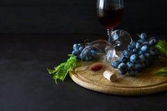 Dois copos de vinho com vinho tinto e uvas decoraram as folhas da videira Imagens de Stock