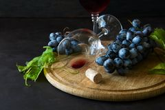 Dois copos de vinho com vinho tinto e uvas decoraram as folhas da videira Fotos de Stock Royalty Free