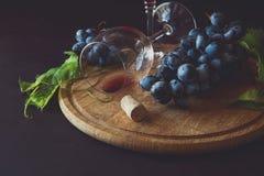 Dois copos de vinho com vinho tinto e uvas decoraram as folhas da videira Foto de Stock Royalty Free
