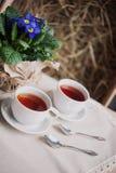 Dois copos do chá Foto de Stock Royalty Free