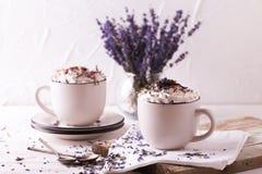 Dois copos do chocolate quente com creme chicoteado Foto de Stock